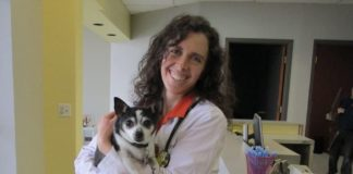 Compassionate Care Animal Hospital Michele Forbes
