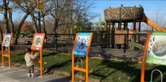 Gallup Park Flutter & Wow Museum Projects