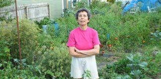 Ann Arbor Tomato