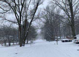 Winter Walks.