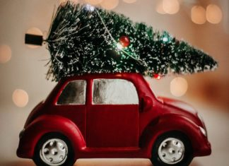 christmas tree drop off