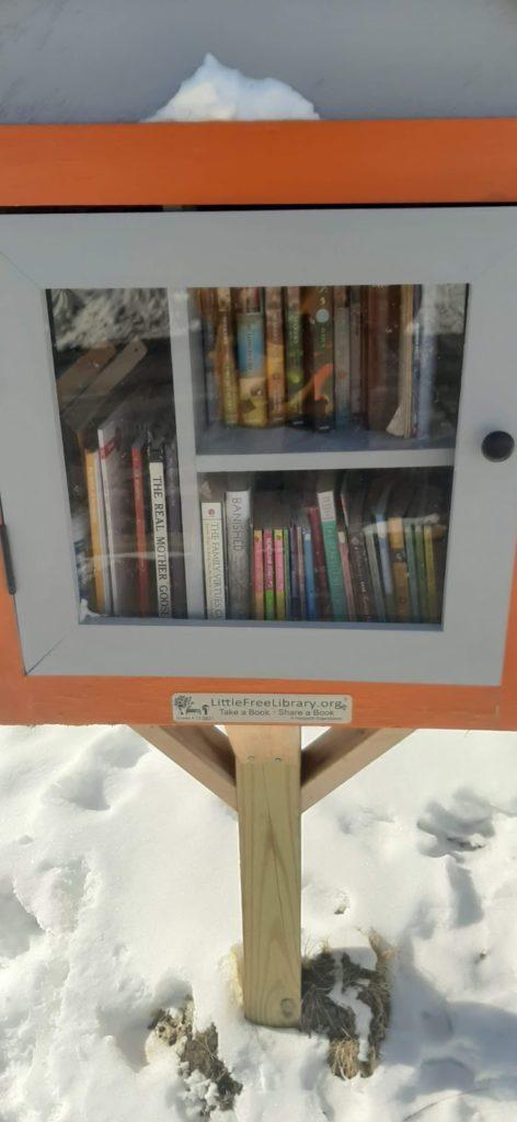 little libraries starwick
