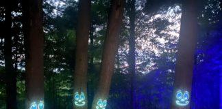Glenlore Trails